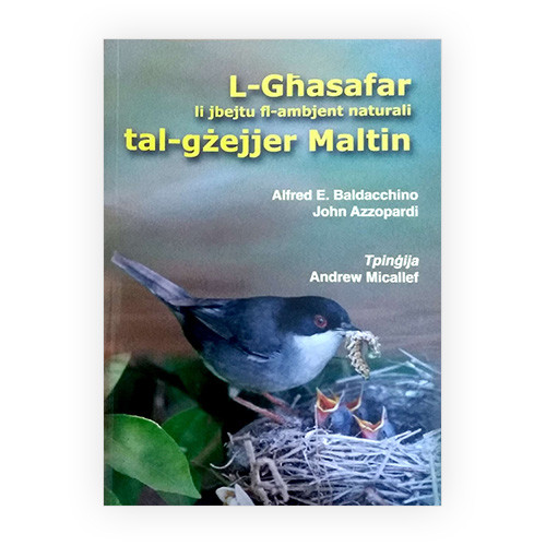 _0000s_0023_L-Ghasafar li jbejtu fl-ambjent naturali tal-gzejjer Maltin